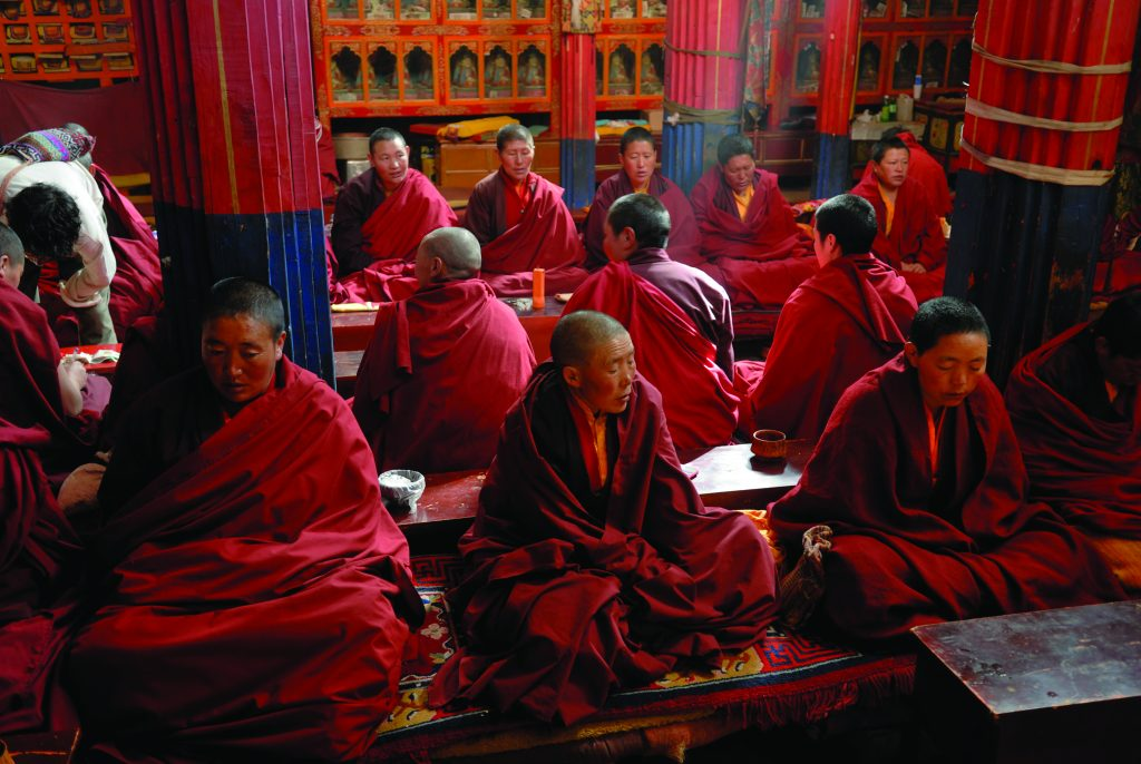 Nuns in the Terdrom convent, Tibet, China, Asia (imageBROKER/Alamy Stock Photo)