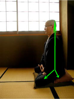 zazen, aitken roshi, wisdom quarterly, lotus position