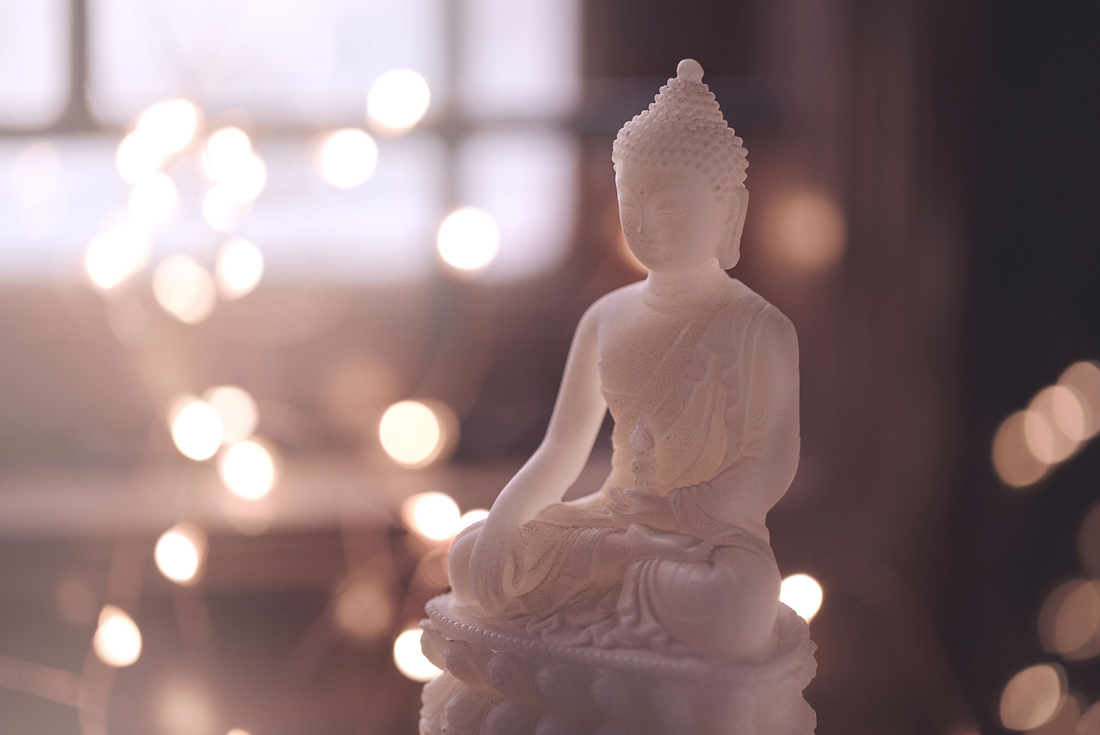 Meditating Every Day and What to Do When You Don't