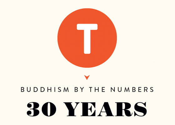 Buddhism by the Numbers: 30 Years